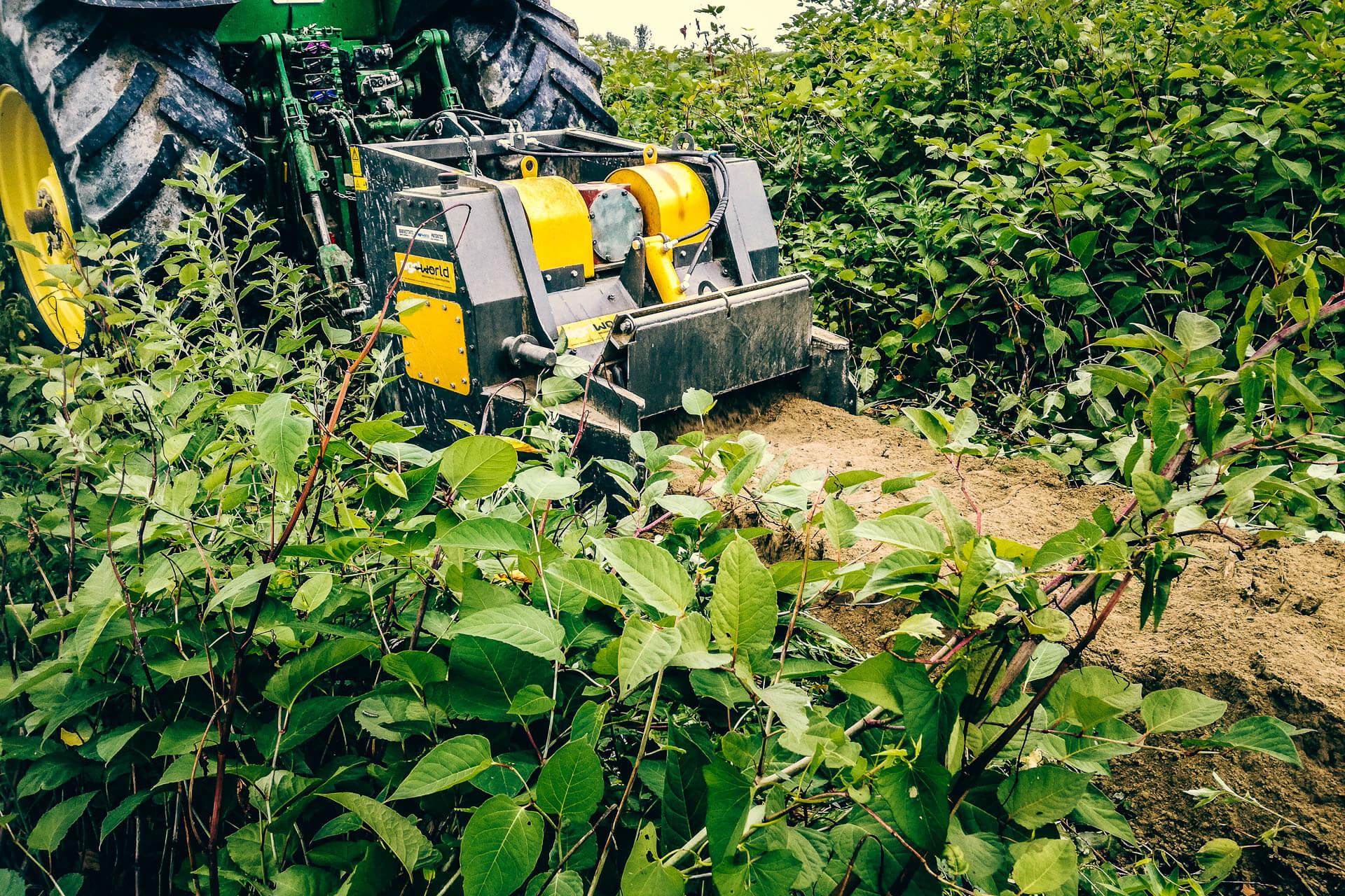 fresa trincia ceppi-stumps cutter-macchine forestali-italia